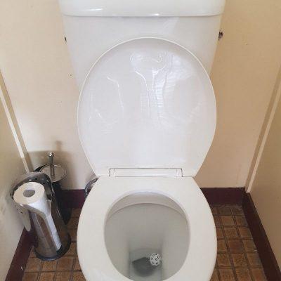 Boys toileting